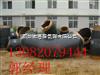 河北聚乙烯保温管厂家 聚氨酯保温管 聚氨酯保温管厂家价格