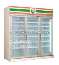 深圳欧雪便利店冰激凌展示柜