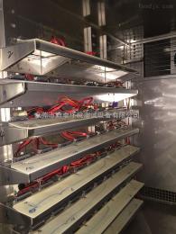 CKLED灯加速老化试验箱/模拟环境试验箱/湿热交变试验箱