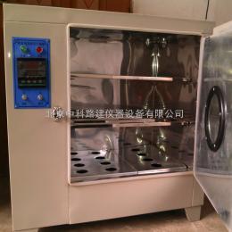 FX101-4型电热鼓风干燥箱