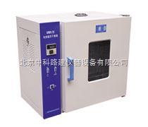 101型电热鼓风干燥箱(中科路建)