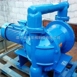 DBY電動隔膜泵,電動隔膜泵廠家,不銹鋼電動隔膜泵