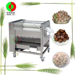 QX-608厂家直销瓜果清洗脱皮机/小型毛刷去皮机/马洋芋去皮机/清菜机