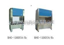 BHC-1300II/B3二級生物安全柜 全排風二級生物安全柜