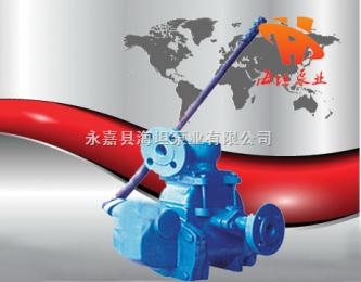 GS-25、38型手搖泵活塞,GS-25、38型手搖泵廠家