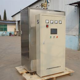 LDR淄博佳铭LDR工业电蒸汽锅炉 高效节能