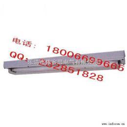 T5节能型BAY81-Q/CBQY/BYS系列防爆防腐全塑荧光灯()