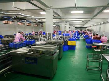 600/2SDZ600型五谷杂粮真空包装机厂