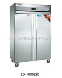 LD-1000L2D立式冷柜 单温立式厨房冷柜