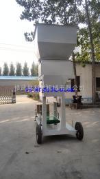 DCS-100木屑颗粒定量包装秤