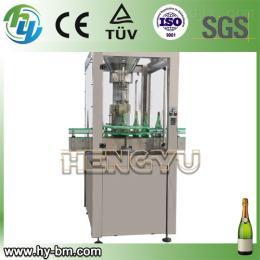 DSJ-1,ZSJ-6,TM-2起泡酒、香槟酒包装生产线