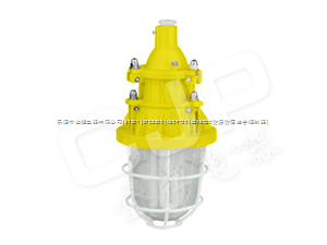 BFC6231BFC6231((防爆節能燈)))BFC6231.BFC6231