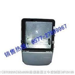 NFC9140節能型廣場燈