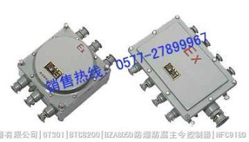 BJX51防爆接线箱