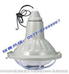 BAD53防爆燈,   BAD53|BAD53-E防爆燈|bad81防爆節能燈|防爆汞燈