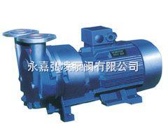 SKA系列水环式真空泵|水环式真空泵结构,水环式真空泵安装,水环式真空泵厂家