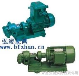KCBKCB不锈钢齿轮油泵
