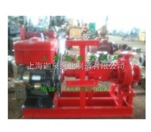 循環式柴油機泵