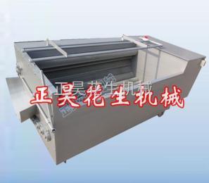 ZH-JX果类清洗机/花生果清洗机/清洗机设备
