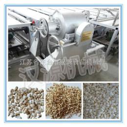 HY-大米膨化機