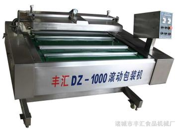 DZ-1000大豆制品粉末全自動真空包裝機
