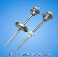 WRN-230-F防腐熱電偶