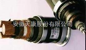 ZR-BPYJVP12R變頻電纜變頻器專用回路電纜
