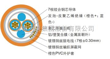 TKFF-A安徽天康现场总线电缆