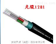 GYXTY-24B1光纖電纜
