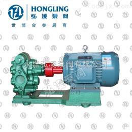 KCB型不锈钢齿轮油泵,卧式管道油泵,圆弧齿轮油泵