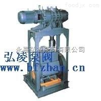羅茨泵-水環泵機組,水環泵機組,羅茨泵