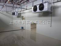 HS-638000吨速冻有机食品冷藏3000平方冷冻冷库安装设计
