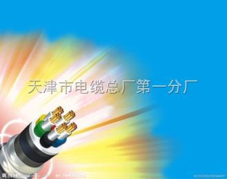 CEFR电缆//船用橡套电缆