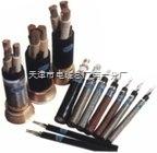 MYJV22矿用电力电缆|MYJV22矿用铠装电力电缆