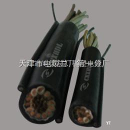 變頻器專用電纜-BPYJVP-3*10+