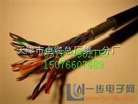 變頻器專用電纜-BPYJVP-3*50