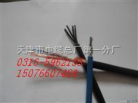 现场总线电缆(FF-A型)