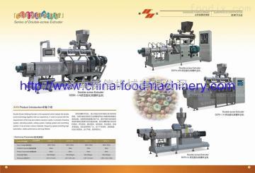 DZ65DZ65雙螺桿擠壓膨化機設備
