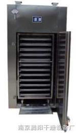 CT-C-1热风烘箱