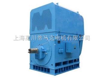 YKK005-8~YKK6304-12YKK系列6KV高压三相异步电动机(6000伏)