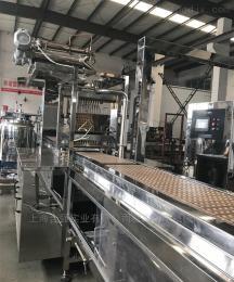 鱼胶软糖生产线 复合胶体糖果浇注设备