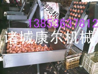 dly1康尔鸡蛋剥皮机生产流水线 鹌鹑蛋全自动剥壳机生产线