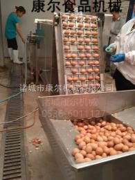 dly1康尔牌鹌鹑蛋鸡蛋剥壳机自动全套生产线招全国代理