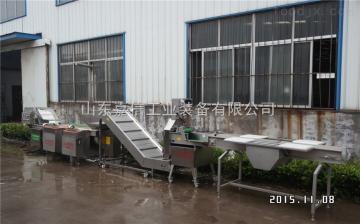 长期供应冲浪 果蔬 袋装清洗设备