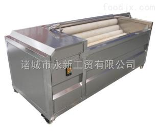 MG-69山东供应土豆清洗去皮机 厂价直销
