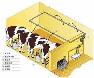 奶山羊挤奶设备