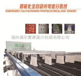福尔喜红枣机械智能化全自动光电枣分选线