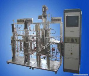 BIOTECH系列实验室多级发酵罐设备
