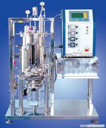 30升磁力搅拌发酵罐