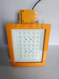 100WLED防水防尘高杆防爆路灯